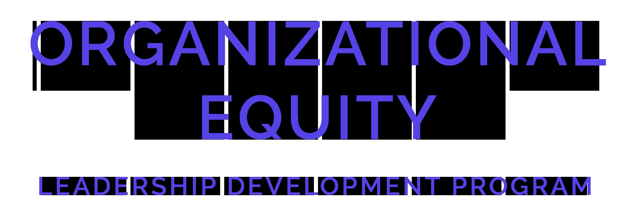 Organizational Equity Leadership Development Program